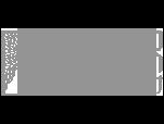 wizman-logo